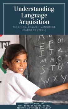 Book cover for Understanding Language Acquisition