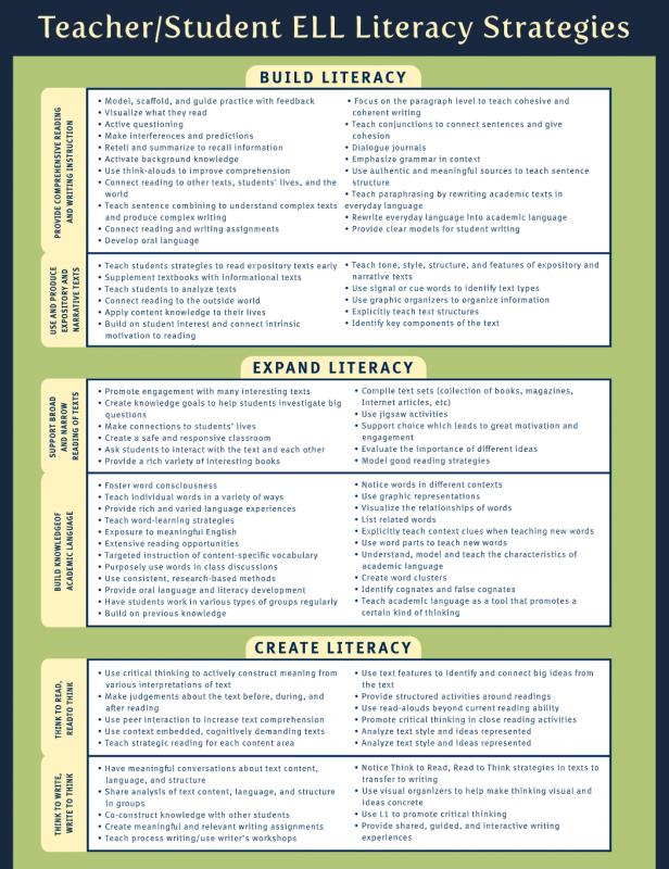 LiteracyGuidelines2.png